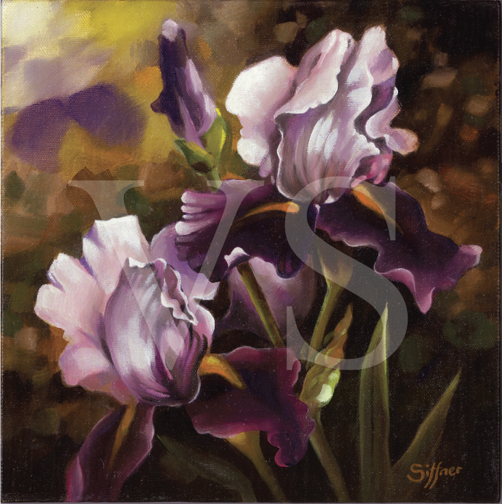 Giclée reproduction of iris