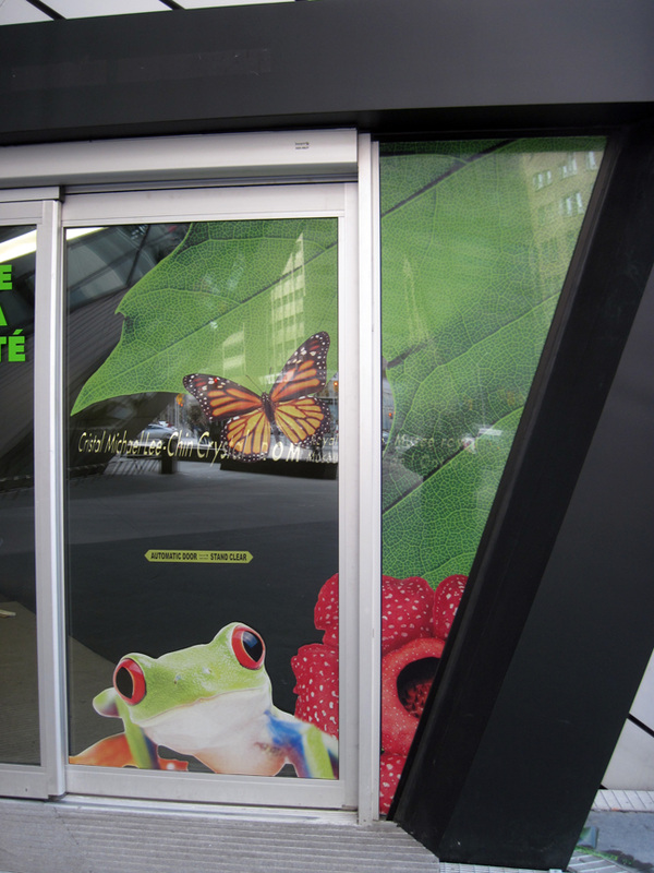 perforated vinyl graphics